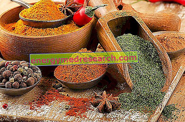 Пищевой источник натуральных красителей