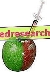 Е475 Полиглицеролови естери на мастни киселини