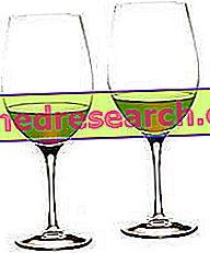 Vin og aterosklerose