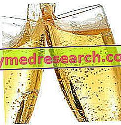 スパークリングワイン - 規制、カテゴリー、ブドウの木と方法