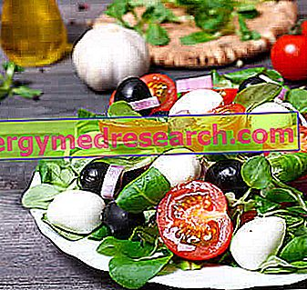 Dieta y Dieta Mediterránea
