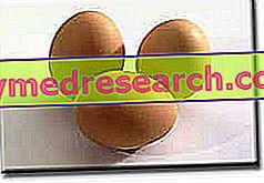 Egg og kolesterol