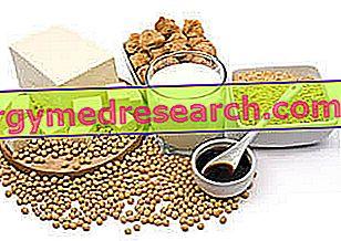 Soya og kolesterol