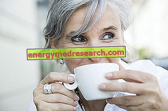Пить кофе продлевает жизнь?