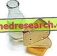 Kalcis ir osteoporozė