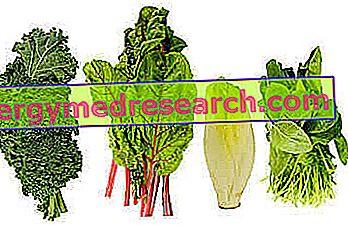 Folsyre bivirkninger