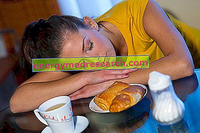 कार्बोहाइड्रेट से भरपूर भोजन के बाद थकान: यह किस पर निर्भर करता है?