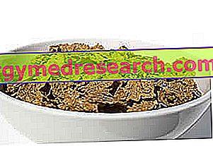 Дефіцит харчових волокон