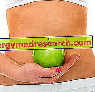 Primer prehrane za gastritis