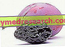 меланоидини