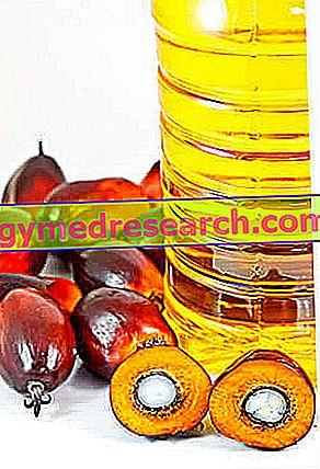 Palmovo olje: je dobro ali slabo?