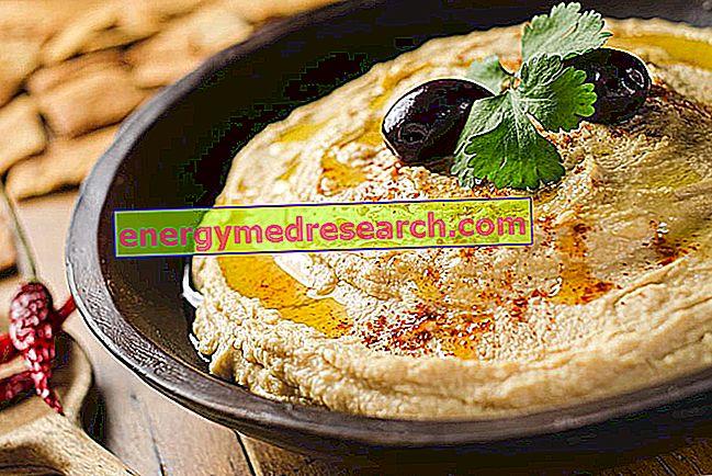 Hummus Etymológia