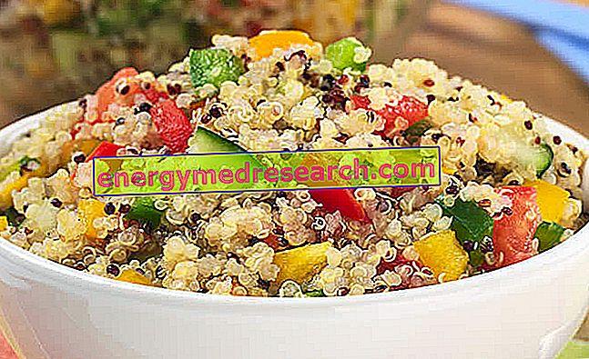 Quinoa - Sådan koges Quinoa