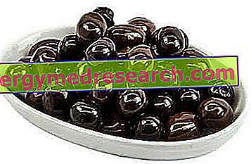 Taggiasca oliivit