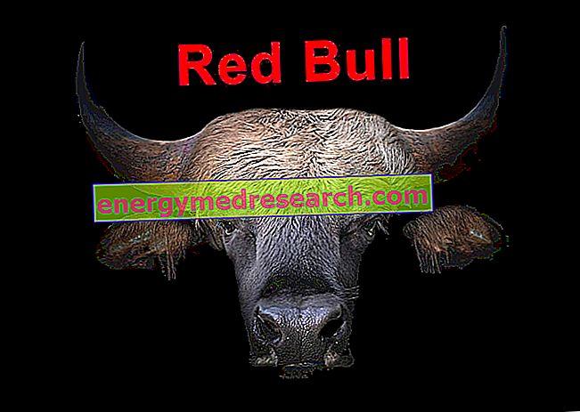 История на Red Bull