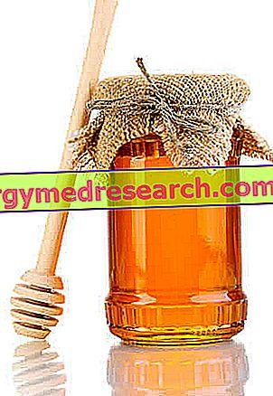 Honing - Behoud en etikettering