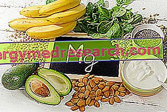 Mat og magnesium