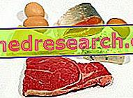 Alimente și proteine