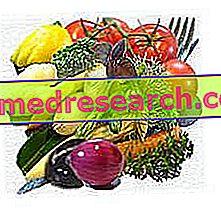 Nueva gama de alimentos