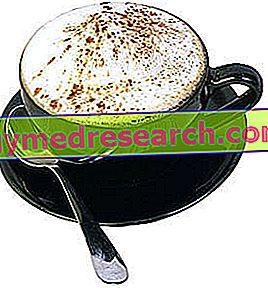 Kalori Cappuccino