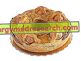 Casatiello: Retsept, toitumisomadused ja kasutamine dieedis R.Borgacci poolt