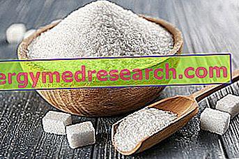 Zucchero di R. Borgacci