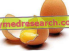 Αυγό - Κρόκος και αυγό λευκό