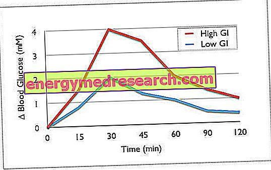 A glikémiás index valódi jelentése