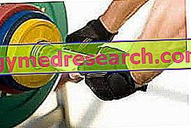 Entrenamiento y dieta para el desarrollo de la fuerza muscular.