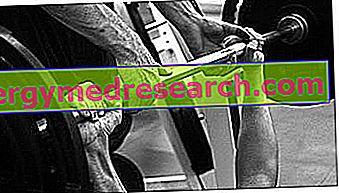 Träning och kost för muskelstyrkautveckling