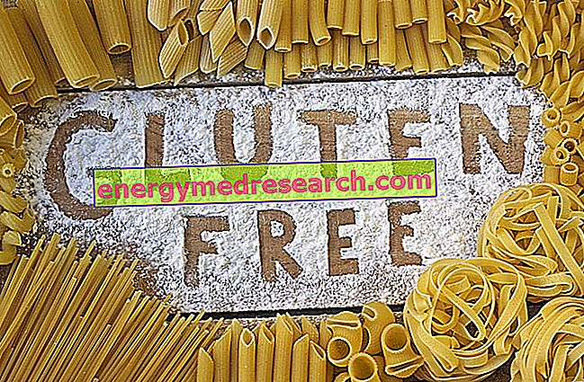 Нови производ без глутена: Шпагети од риже и пасуља