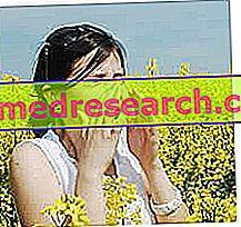 """MCS - Kepekaan Kimia Pelbagai: """"kerbau"""" atau penyakit milenium baru?"""