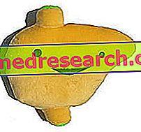 Glutaminsyre-oksaloacetisk transaminase - AST eller SGOT