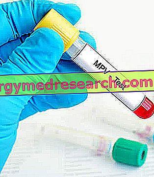 MPV - kraujo analizė