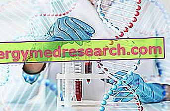 MTHFR мутация Г.Бертелли