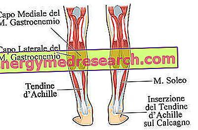pierde greutatea cu tendonita lui ahile setați obiective pentru a pierde în greutate