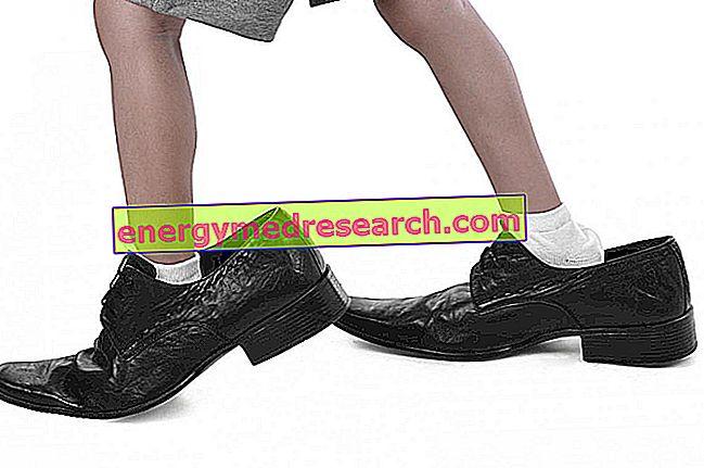 Saiz kaki telah meningkat sejak beberapa dekad yang lalu