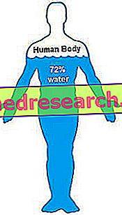 मानव शरीर में जैव प्रतिबाधा और पानी