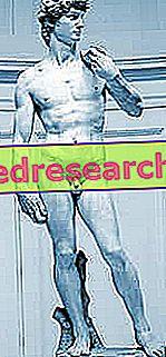 Ihanteellinen kehon mittasuhteet