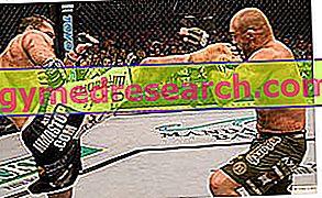 Sportlik ettevalmistus segatud võitluskunstide jaoks (MMA)