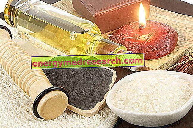 Pregled uporabe arganovega olja: za kaj?