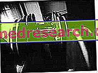 Naravni telesni steroidi: mezikoli moči