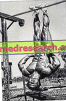 Lihase määratlemise või lõikamise põhitõed looduslikus kehahoones