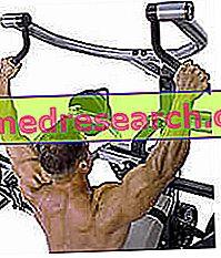 Trening og kroppsbygging: grunnleggende prinsipper
