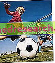 Κατηγορίες νεότητας ποδοσφαίρου
