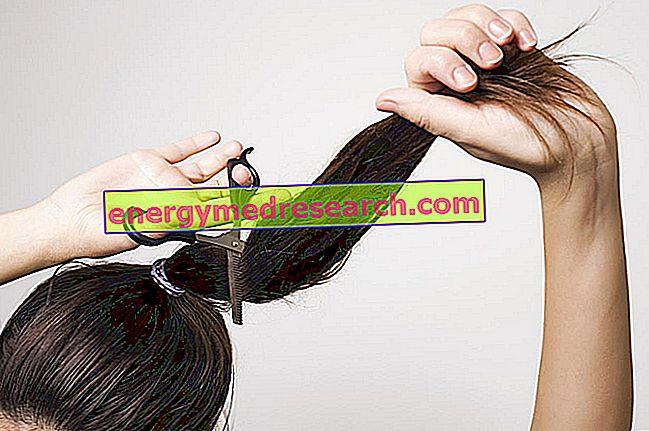 Hauraat hiukset: neuvoja