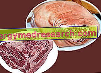 Hat dari Imam: Sifat Pemakanan, Peranan dalam Diet dan Cara Memasak oleh R.Borgacci