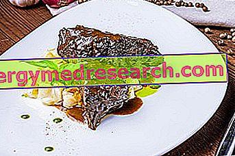 Sūdyta: virimo technika ir receptai, mitybos savybės, vaidmuo dietoje ir kaip ruošti R.Borgacci