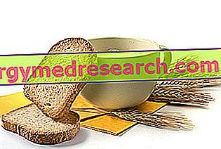 Prepečenec: prehranska lastnost, vloga v prehrani in uporaba v kuhinji, ki jo je pripravil R.Borgacci