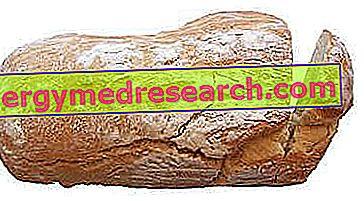 Elavult kenyér